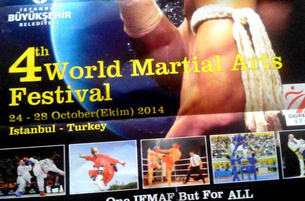 فستیوال هنرهای رزمی