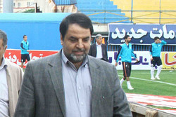 محمود شیعی