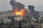 معاریو: اسرائیل آماده حمله به غزه می شود