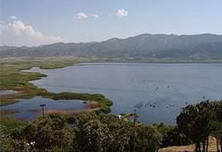 وضعیت دریاچه زریوار در سطح ملی باید پیگیری شود