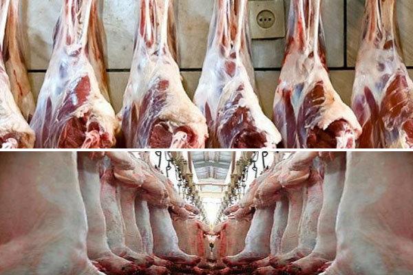۱۴۰۰ تن گوشت قرمز تحت نظارت دامپزشكی در خراسان جنوبی توليد شد