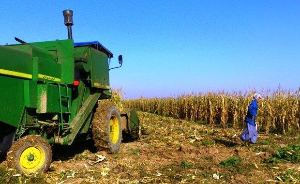 واردات کشاورزان را از چرخه تولید خارج کرد