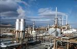 مدارس سبز در هرمزگان راه اندازی می شود/پرداخت عوارض آلایندگی نفت قاره به بوشهر