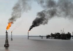 جلوگیری از رشد آلایندهها در استان بوشهر/مراکز تخصصی ایجاد میشود