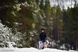اسکاٹ لینڈ میں شدید سردی سے درجہ حرارت منفی 14 ہوگیا