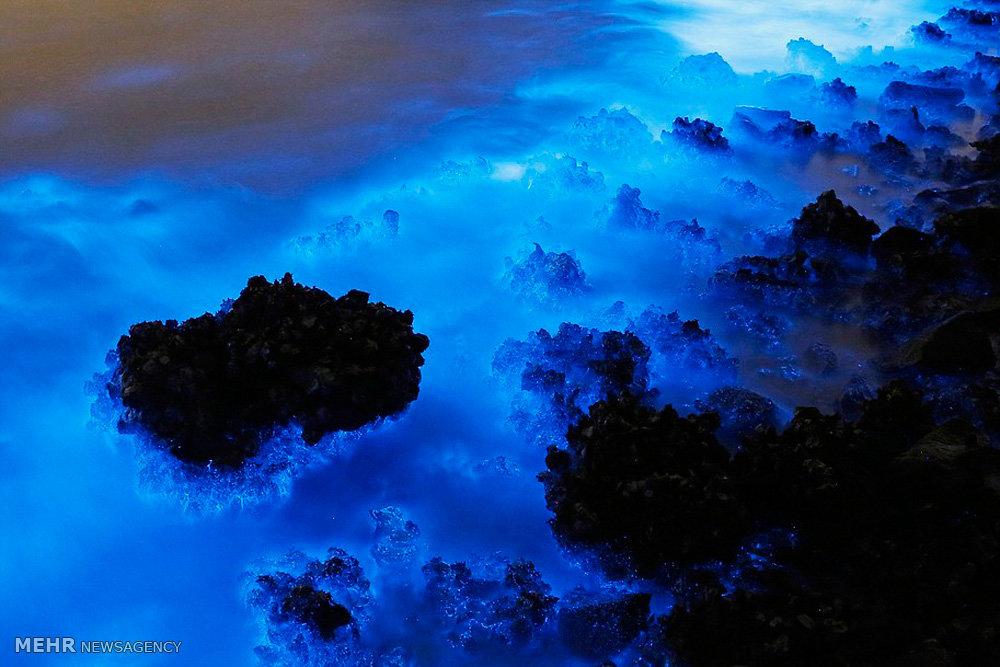 نور آبی سمی