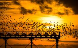 potd-sunset_3177272k.jpg