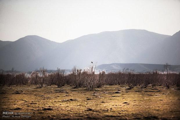 خشکسالی دریاچه پریشان