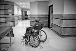 طرح ارائه خدمات به ۵۰ معلول افغانی در شیراز اجرا می شود