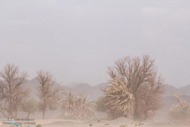 اختصاص۶۰ میلیارد تومان برای مقابله با ریزگردها و احیای تالابها