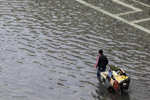781737 - تصاویر جالب از بالا آمدن سطح آب در ونیز