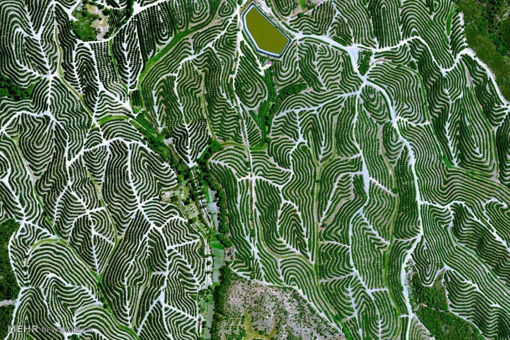 تصاویر ماهواره ای جالب از زمین
