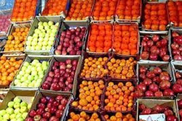 ۱۵۰ تن سهمیه میوه برای شب عید به پلدختر اختصاص یافت