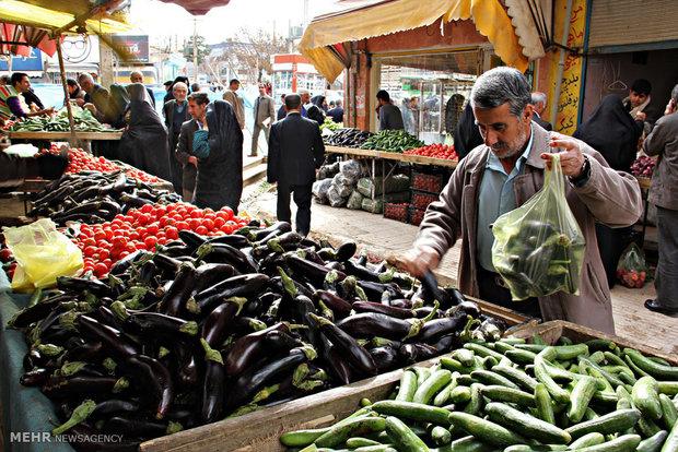 بازار  میوه و تره بار ایلام