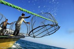 محدوده مجاز صید در دریاچه سد مارون تعین شد