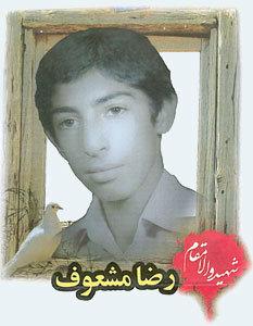 رضا مشعوف