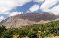 تبدیل بخشی ازمنطقه حفاظت شده دنای شرقی به سایت گردشگری صحت ندارد