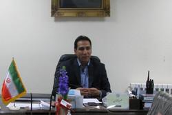 علیرضا محمدی مدیر عامل سازمان آتش نشانی و خدمات ایمنی شهرستان شاهرود