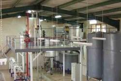 ۷ آنزیم مصرفی در صنایع غذایی به تولید آزمایشگاهی میرسد