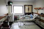 اسامی زائران مصدوم تصادف در عراق اعلام شد