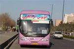 تسهیل تردد اتوبوس گردشگران ایرانی و عراقی/ ساماندهی مرزهای مشترک