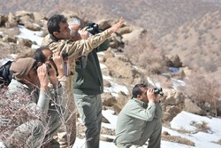 محیط بانان دنا شکارچیان را از مرگ حتمی نجات دادند