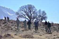 دستگیری شکارچیان کل پس از سه روز در پارک ملی دنا