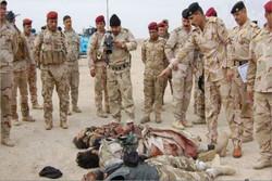القوات العراقية تقتل 30 انتحارياً وتضبط اربع عجلات مفخخة و14 حزاماً ناسفاً