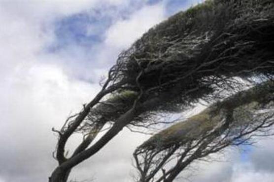 وزش باد شدید در گلستان /افزایش دمای مناطق کوهپایه ای
