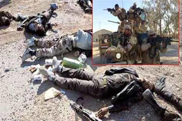 یمن میں القاعدہ کے 6 دہشت گرد ہلاک اور زخمی