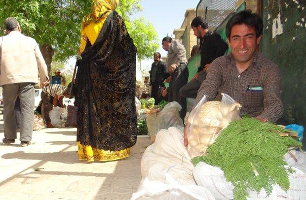 بازار گیاهان کوهی یاسوج