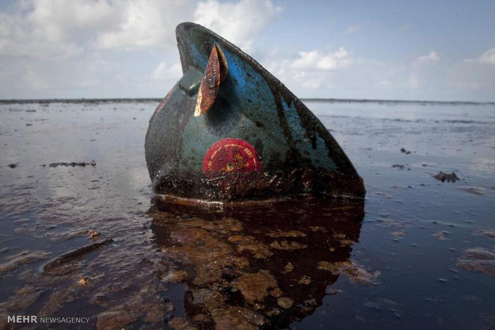 آلودگی نفتی خلیج مکزیک