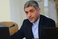 Iran's economy min. meets Chinese counterpart