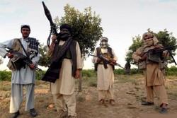 پاکستان کے بعض علاقہ دہشت گردوں کی جنت