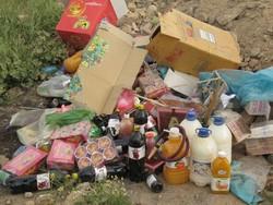 ۵.۴ تن مواد غذایی غیرقابل مصرف در دزفول معدوم شد