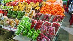 ۱۳۷۰۰ تن محصولات باغی و دامی از استان زنجان صادر شده است