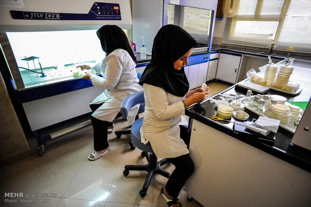 پردیس مشترک پارکهای فناوری و دانشگاهها راهاندازی میشود