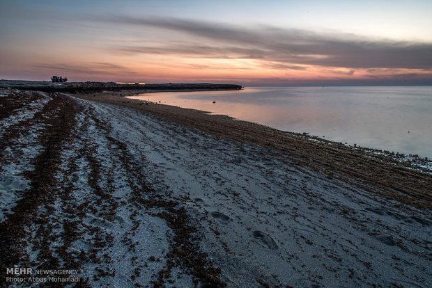 خطرات آب شیرین کن ها برای زیست بوم خلیج فارس/لزوم مدیریت آب