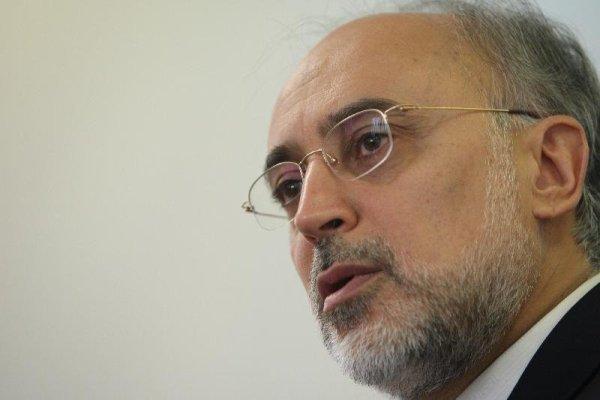 علی اکبر صالحی، رئیس سازمان انرژی اتمی