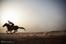 مرکز اسب سواری با استانداردهای بالا در خوزستان احداث می شود