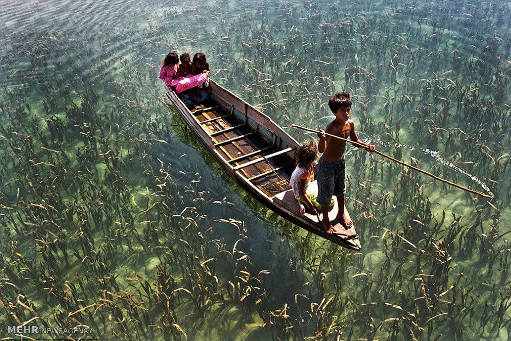 زندگی بر روی آب