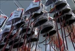 ذخیره یکصد هزار نمونه در بانک خون بند ناف رویان