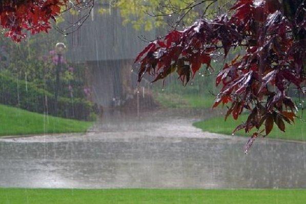 کراپشده - باران