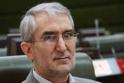 دولت بحث ساماندهی افاغنه در کرمان را اجرایی کند