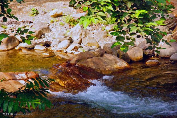 طبیعت بهاری منطقه گردشگری اشکورات استان گیلان