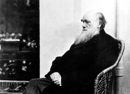 امروزه انتقاد از داروین توهین به مقدسات است