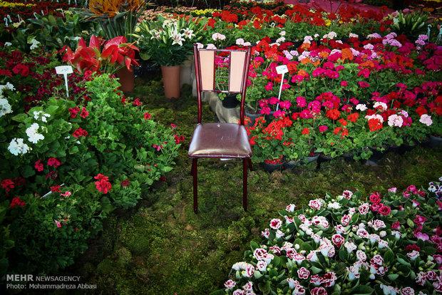 نمایشگاه گل و گیاه