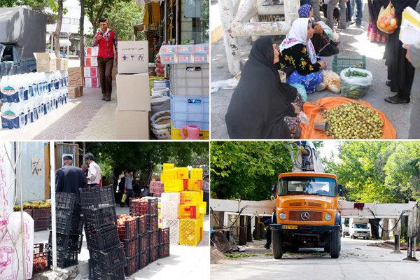 ماجرای درگیری ماموران اجراییات یاسوج با میوه فروش