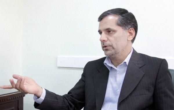 سیدحسین نقوی حسینی، سخنگوی کمیسیون امنیت ملی و سیاست خارجی مجلس