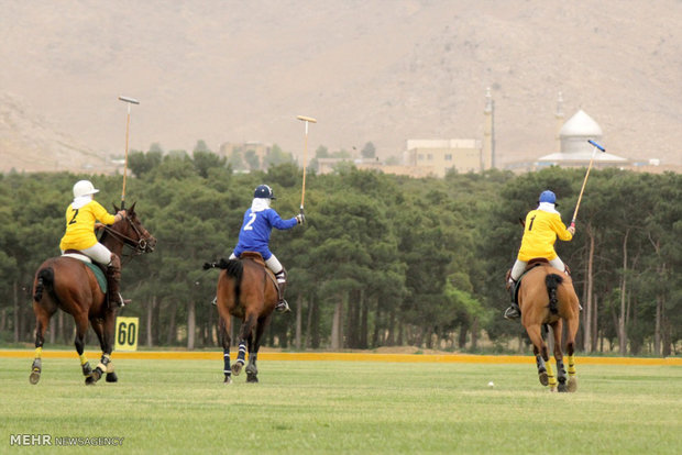 Tehran holds first women's polo cup